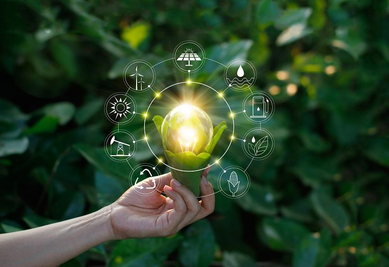 Ecology-concept.-Hand-holding-light-bulb-against-nature-on-green-leaf-with-icons-energy-sources-for-renewable,-sustainable-development,-save-energy.-cm