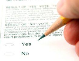 Pinocchio politics on the november ballot-cm